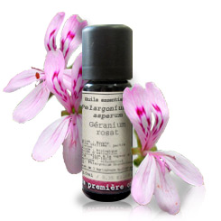 Essential oil African geranium BIO (Pelargonium x asperum)