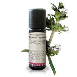 Essential oil Spanish red thyme (Thymus zygis)