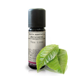Essential oil Tea tree BIO (Melaleuca alternifolia)