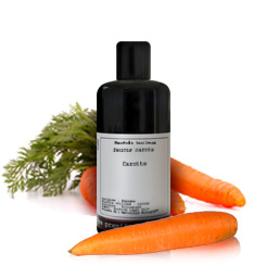 Oily macerate Carrot BIO (Daucus carota) 50ml