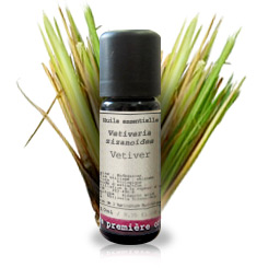 Essential oil Vetiver BIO (Vetiveria zizanoides)