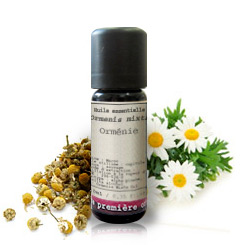 Essential oil Wild chamomile (Ormenis mixta)