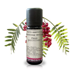 Essential oil Brazilian peppertree (Schinus molle)
