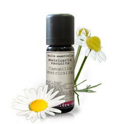 Essential oil German chamomile (Matricaria recutita)