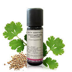 Essential oil Coriander BIO (Coriandrum sativum)