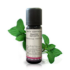 Essential oil Spearmint BIO (Mentha viridis)