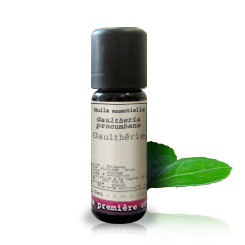 Essential oil Wintergreen BIO (Gaultheria fragrantissima)